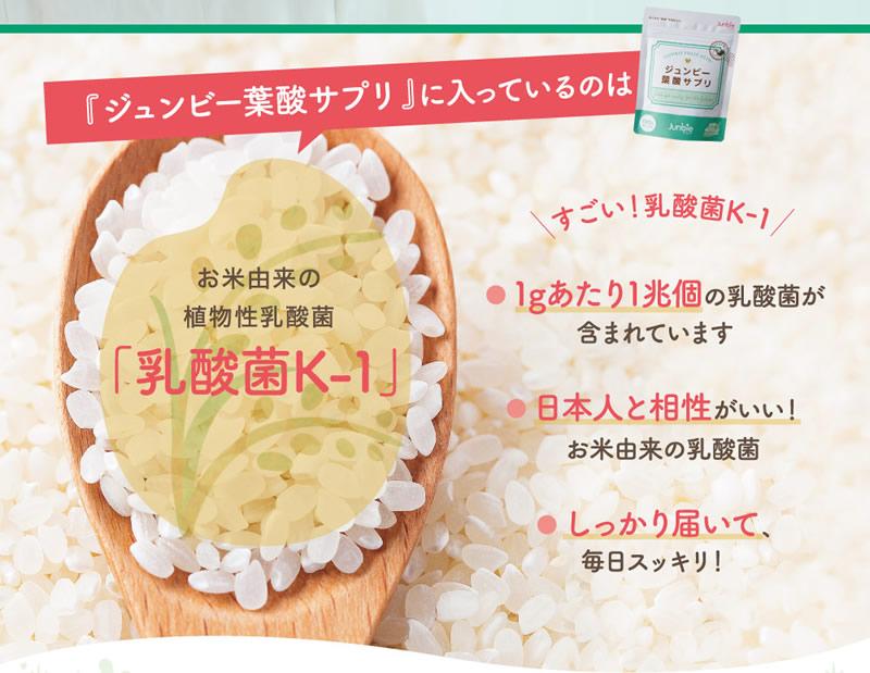 『ジュンビー葉酸サプリ』に入っているのは、お米由来の植物性乳酸菌「乳酸菌K-1」
